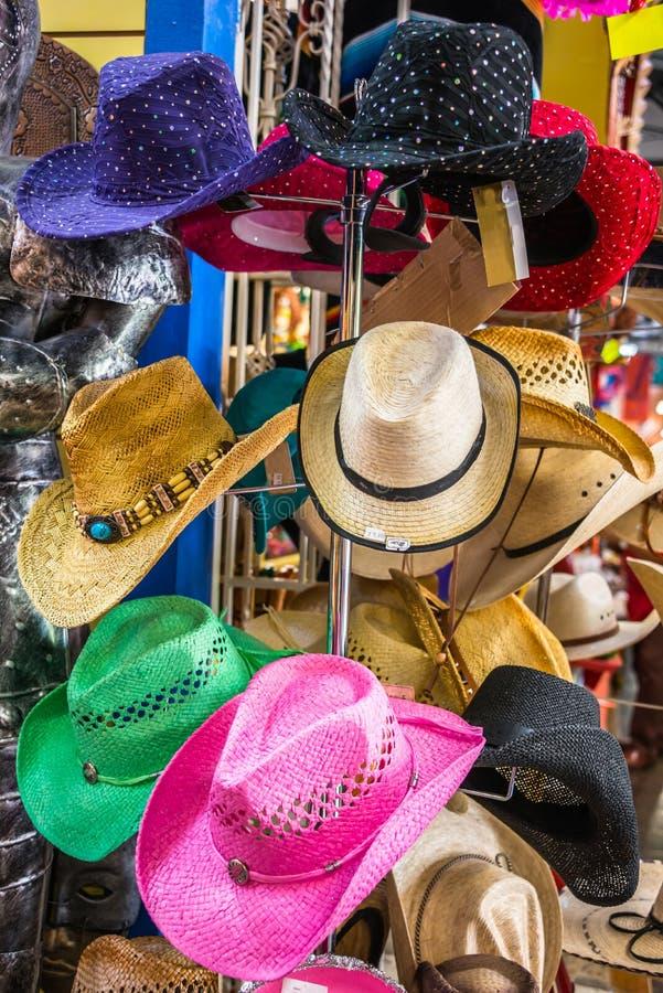 Vrouwen en Meisjes Modieuze Cowboy Hats royalty-vrije stock afbeeldingen