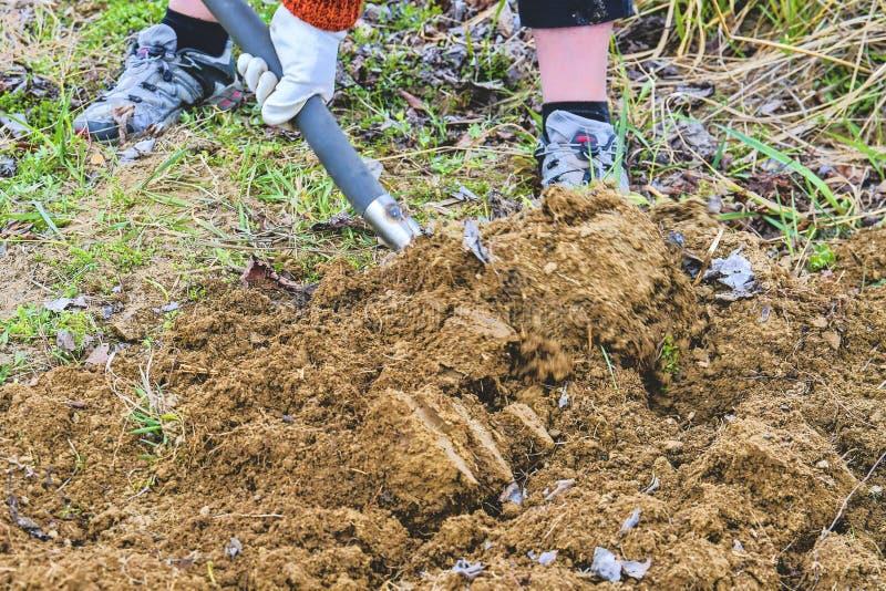 Vrouwen gravende grond met tuinvork Het tuinieren en hobbyconcept Het tuinieren in de Lente royalty-vrije stock afbeelding