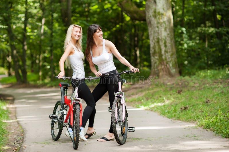 Vrouwen op fietsen in een park royalty-vrije stock afbeelding