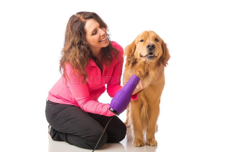 Vrouwen verzorgende hond met een blowdryer stock fotografie
