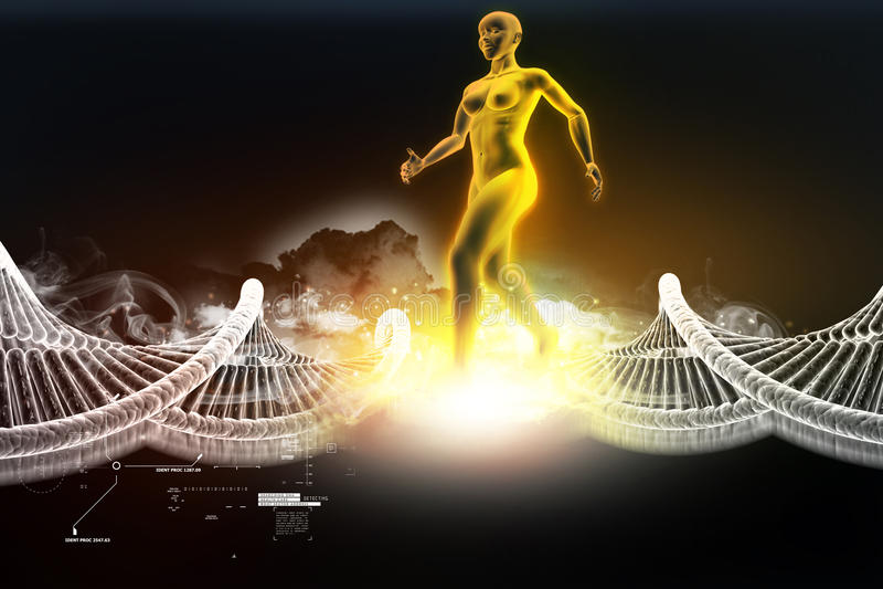 Vrouwen vrouwelijk menselijk lichaam met DNA stock illustratie