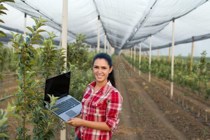 Vrouwenagronoom in de boomgaard stock foto