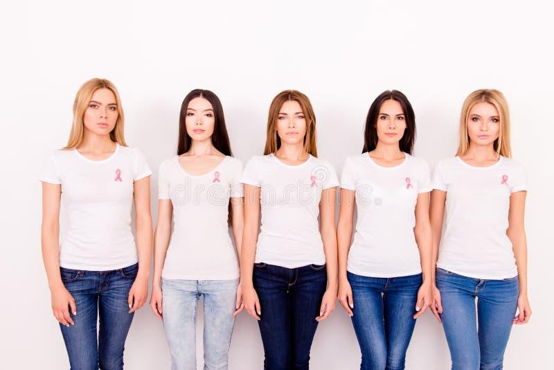Vrouweneenheid, verbinding die, oneness, hulp, steun, tegen breas verzetten zich royalty-vrije stock afbeeldingen