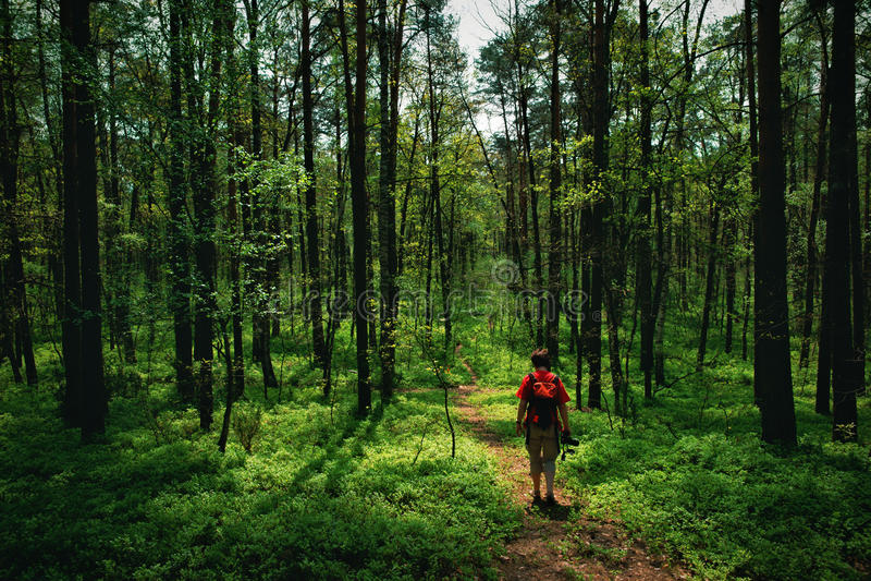 Vrouwenfotograaf in in openlucht, zoekend een onderwerp voor foto's royalty-vrije stock afbeelding