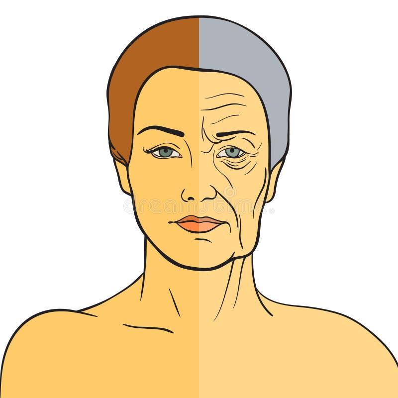 Vrouwengezicht before and after het verouderen Jonge vrouw en oude vrouw met rimpels De zelfde persoon in haar jeugd en oude dag stock illustratie