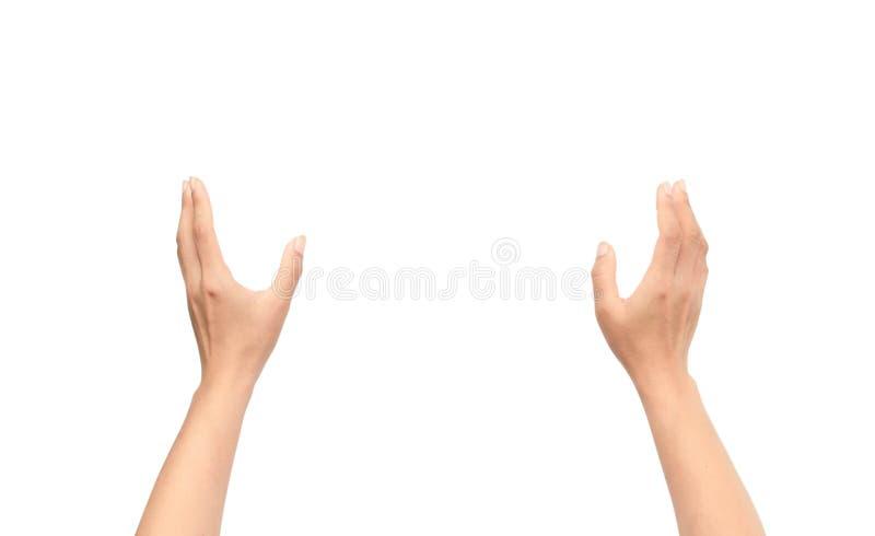 Vrouwenhand bidden geïsoleerd op witte achtergrond stock foto's
