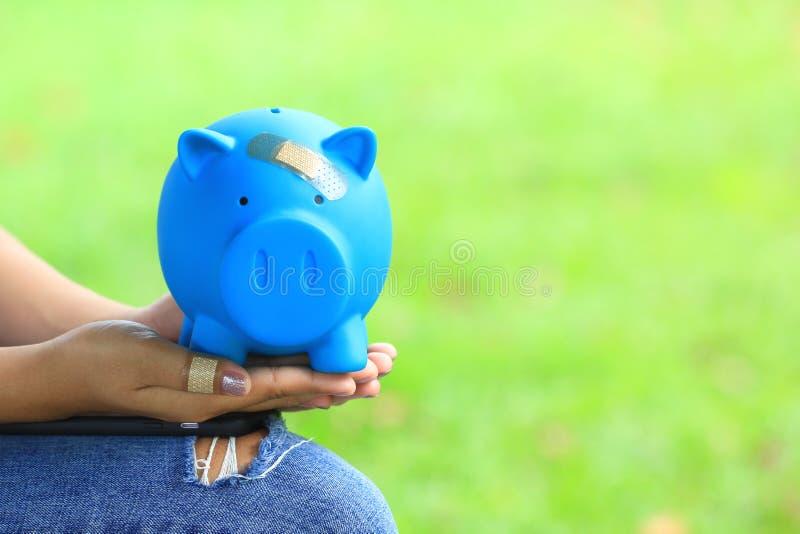 Vrouwenhand die blauwe piggy houden aan het pleister op de hoofd natuurlijke groene achtergrond, sparen geld voor Medische verzek stock afbeeldingen