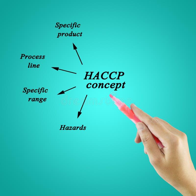 Vrouwenhand die HACCP-concept op blauwe achtergrond voor gebruik in productie schrijft stock foto