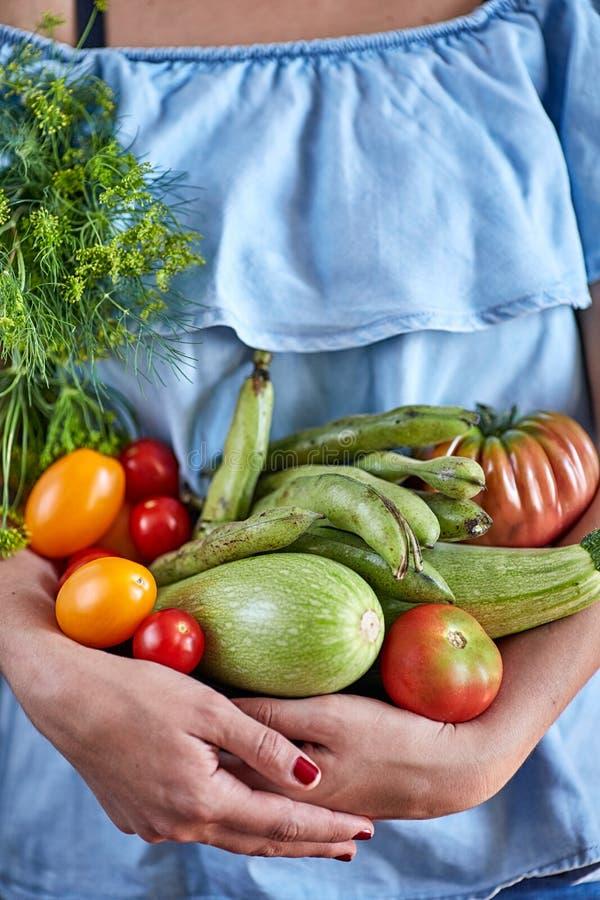 Vrouwenhanden die groenten houden stock afbeelding
