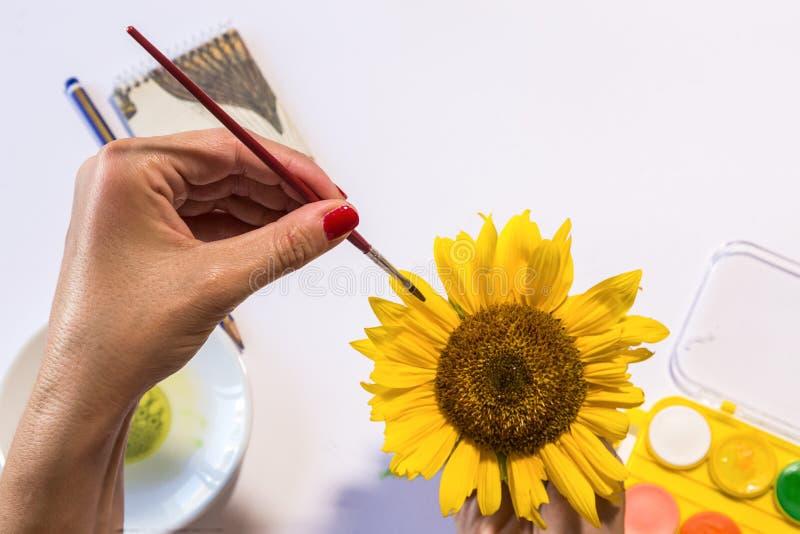 Vrouwenhanden het schilderen royalty-vrije stock foto's