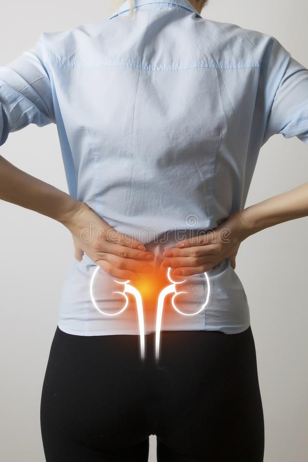 Vrouwenlichaam met visualisatie van nieren en blaas royalty-vrije stock afbeelding