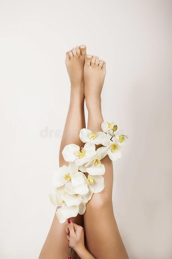 Vrouwenlichaamsverzorging Sluit omhoog van Lange Vrouwelijke Benen met Perfecte Smoot stock fotografie