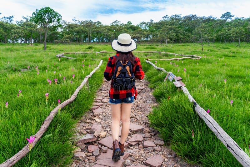 Vrouwenreiziger die met rugzak bij Krachiew-bloemgebied lopen, Thailand reis concept royalty-vrije stock foto's