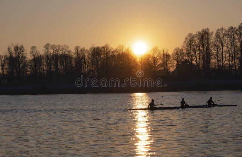 Vrouwenroeiers bij zonsondergang - Milan Idroscalo royalty-vrije stock foto