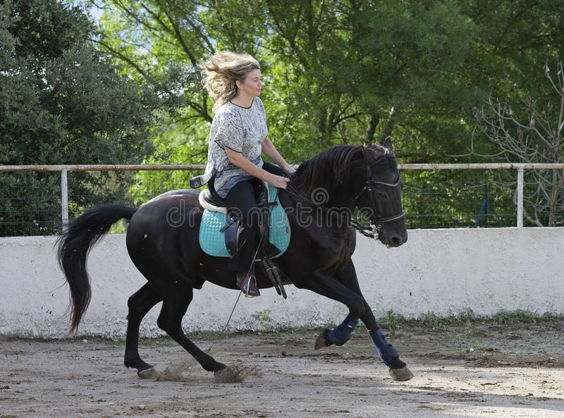 Vrouwenruiter en paard stock foto