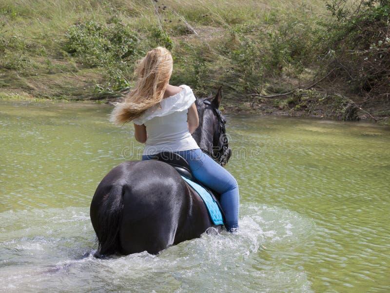 Vrouwenruiter en paard royalty-vrije stock afbeeldingen