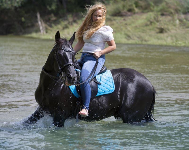 Vrouwenruiter en paard stock afbeelding