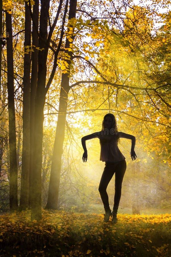 Vrouwensilhouet over de herfstbos royalty-vrije stock afbeeldingen