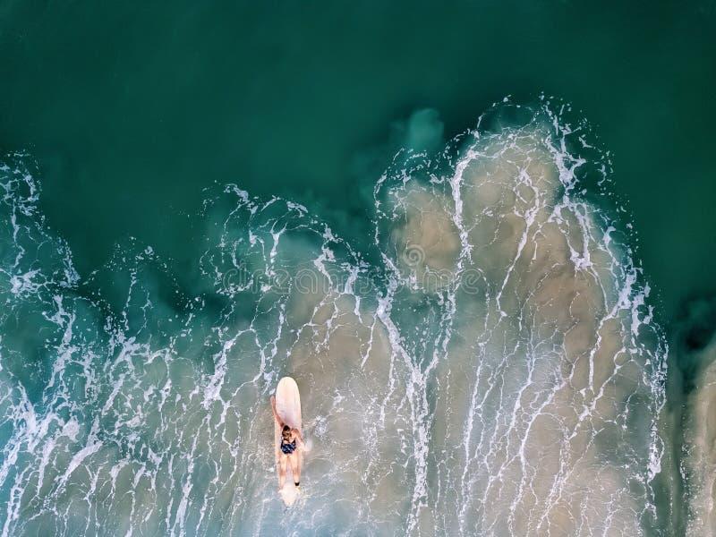Vrouwensurfer die alleen in de oceaan paddelen royalty-vrije stock afbeelding