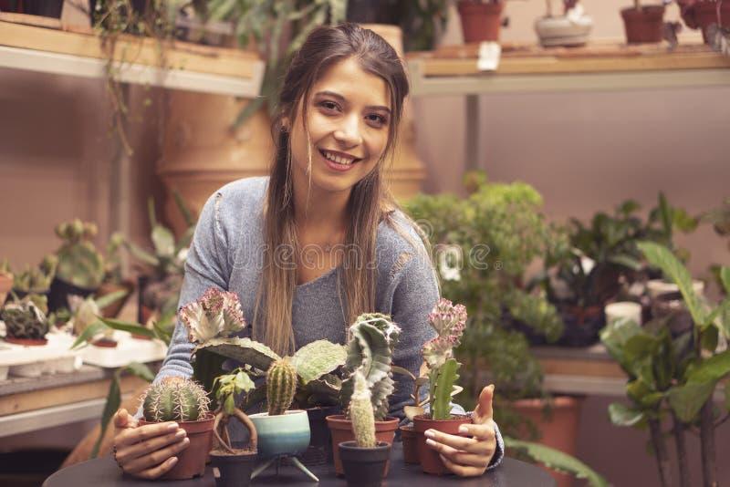 Vrouwentuinman die cactusinstallatie in een pot in serre planten stock foto's