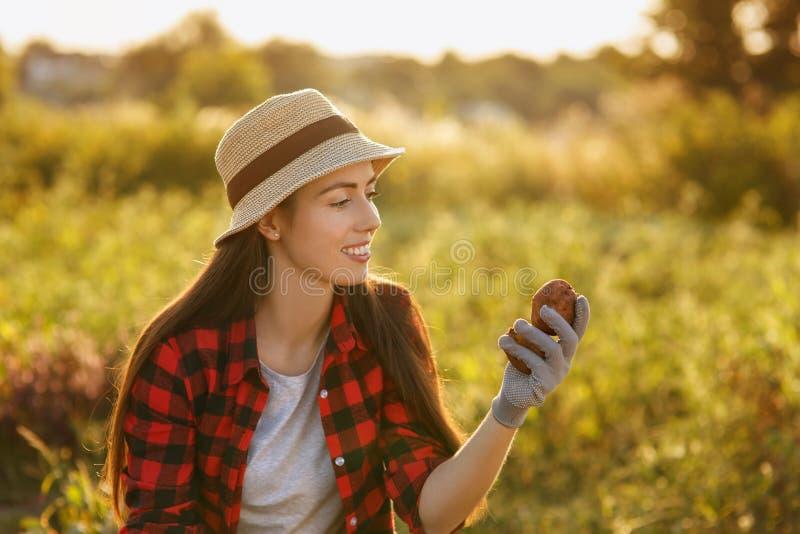 Vrouwentuinman met aardappels stock afbeelding