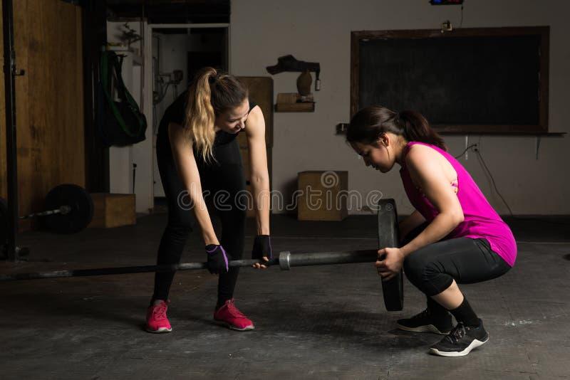 Vrouwenvestiging een barbell voor hun training stock fotografie
