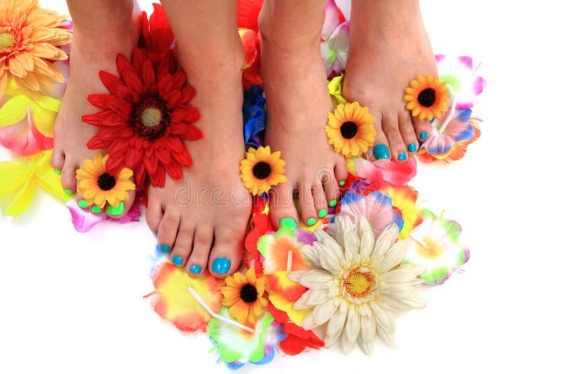 Vrouwenvoeten en bloemen (pedicure tbackground) royalty-vrije stock fotografie