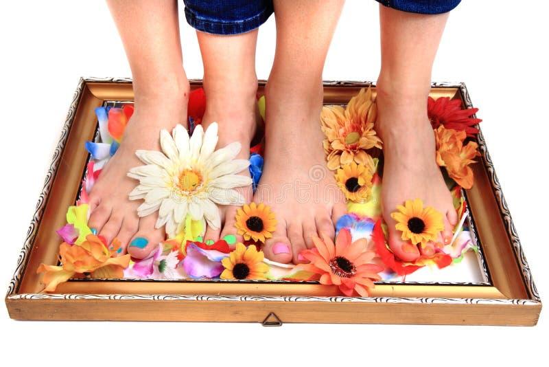 Vrouwenvoeten en bloemen (pedicure tbackground) stock afbeelding