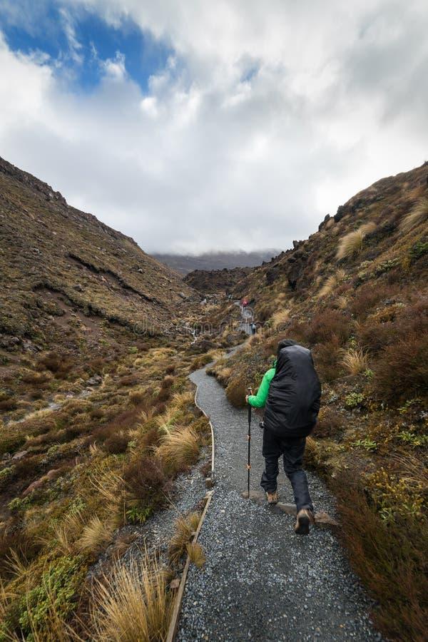 Vrouwenwandelaar die met rugzak op het nationale park van Tongariro stappen stock afbeeldingen