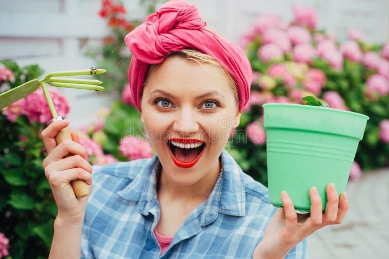 vrouwenzorg van bloemen in tuin Bloem zorg en het water geven gronden en meststoffen hydrangea De lente en de Zomer gelukkig royalty-vrije stock fotografie