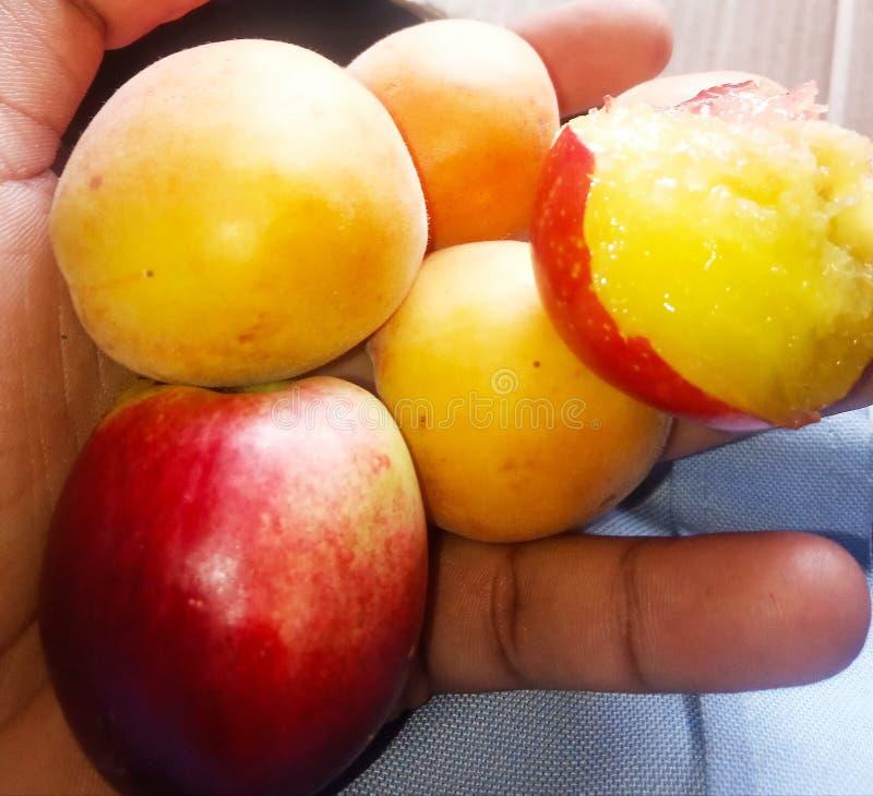 Vruchten, Abrikoos, jujube, perzik, stock fotografie
