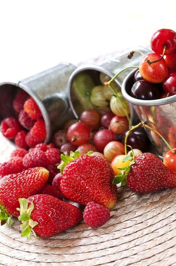 Vruchten en bessen stock fotografie