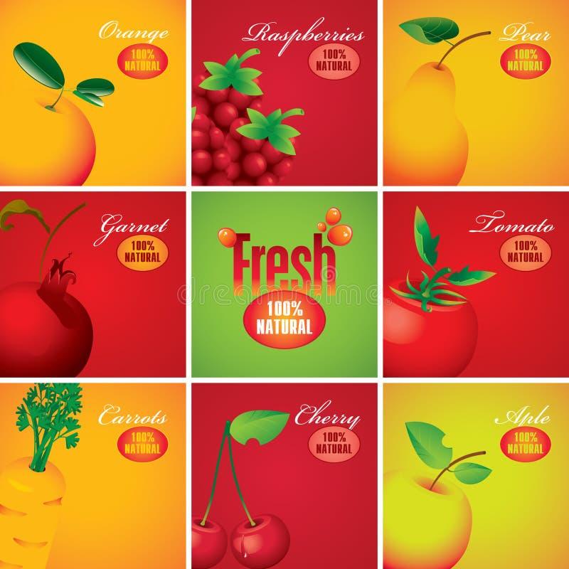 Vruchten en bessen stock illustratie