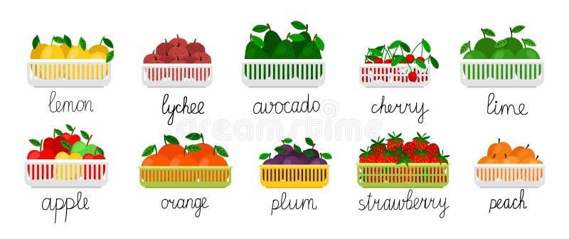 Vruchten en bessen in containers royalty-vrije illustratie