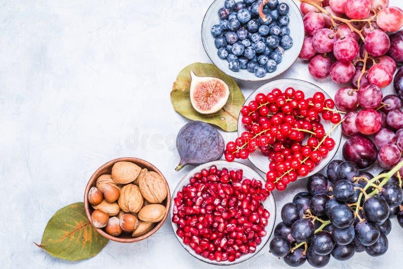 Vruchten en bessen, de tekstruimte van de noten hoogste mening royalty-vrije stock afbeeldingen