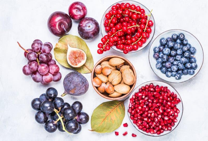 Vruchten en bessen, noten hoogste mening royalty-vrije stock foto's