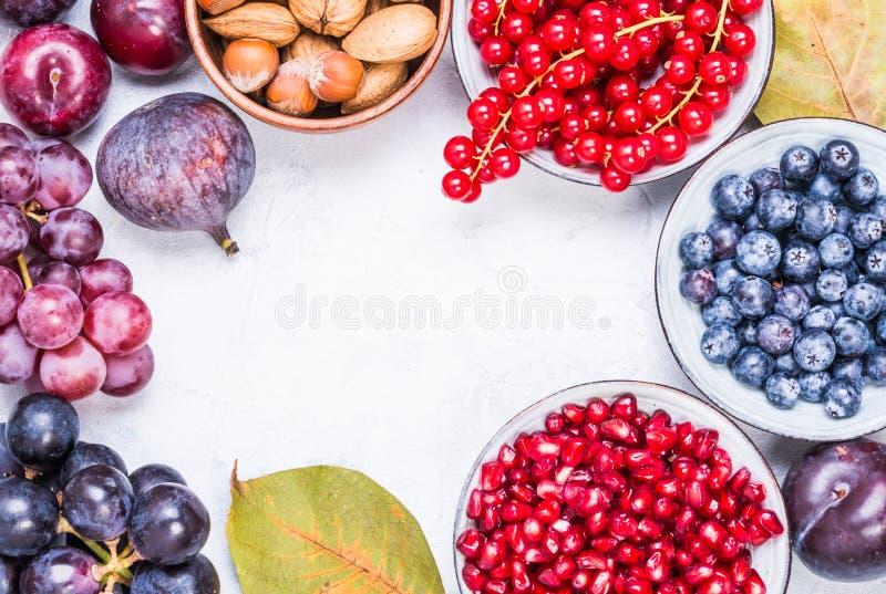 Vruchten en bessen, noten hoogste mening stock afbeeldingen