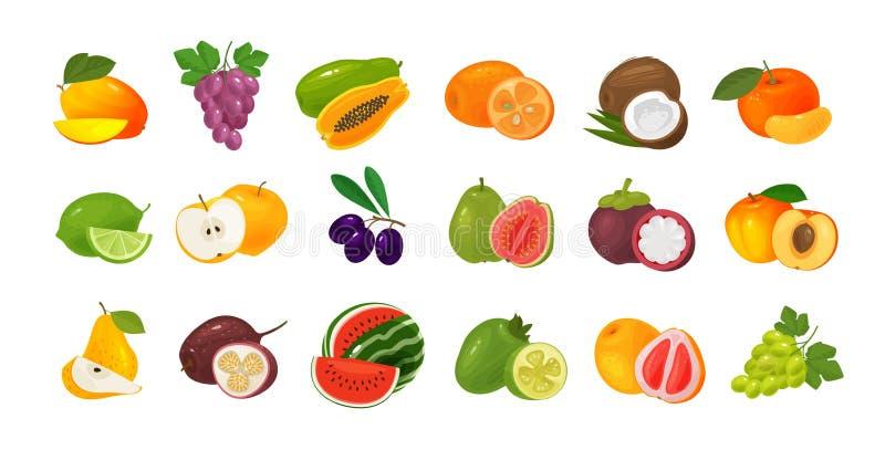 Vruchten en bessen, reeks gekleurde pictogrammen Het concept van het voedsel Vector illustratie stock illustratie