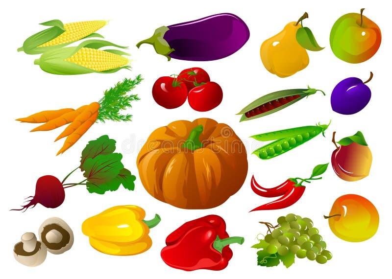 Vruchten en groenten vector illustratie