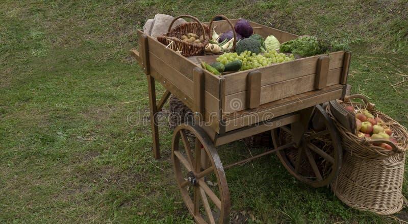 Vruchten en groenten in de kar Kool, appelen, courgette, peren, wortelen, bieten, aardappels, peterselie Wederopbouw van royalty-vrije stock foto