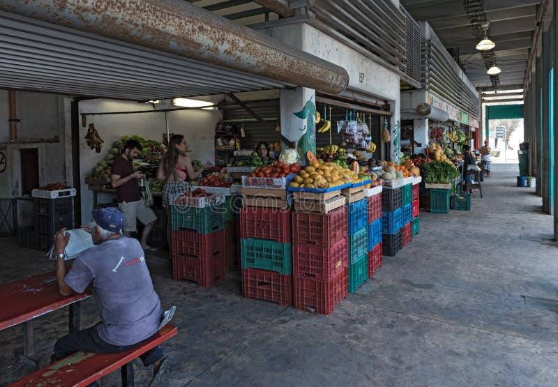 Vruchten en plantaardige boxen bij de lokale markt in Progreso, Yucatan, Mexico stock foto's