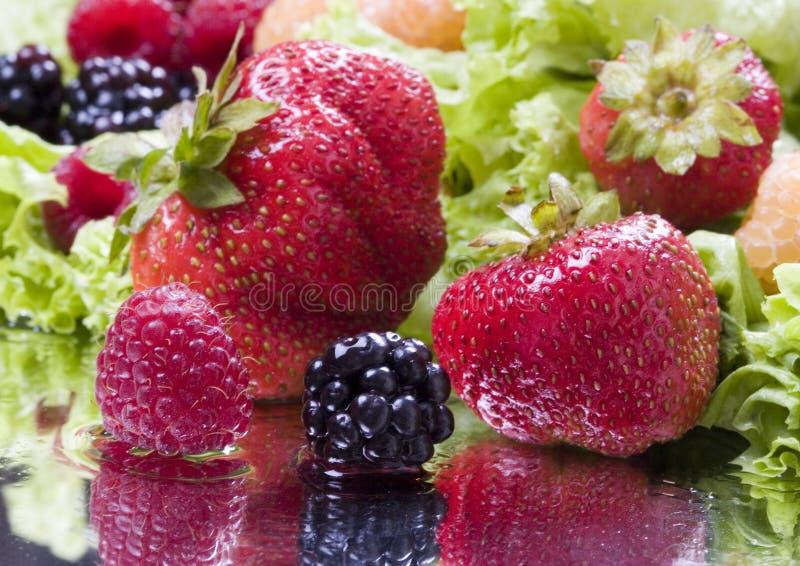 Vruchten en sla stock foto