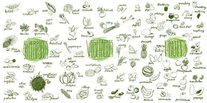 Vruchten, groenten en superfoods inzameling stock illustratie