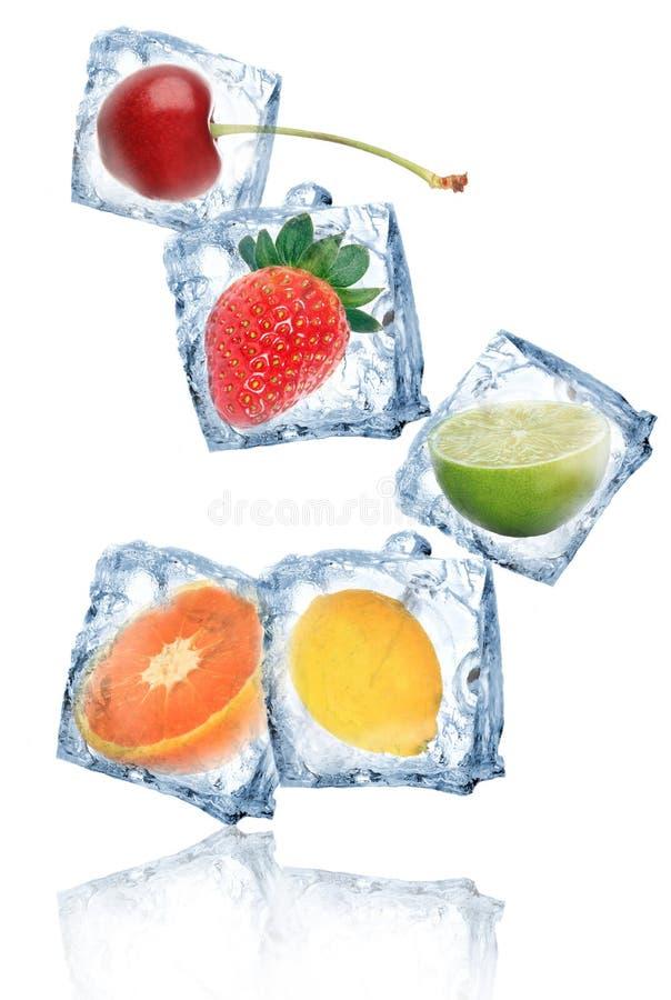 Vruchten in ijsblokjes stock afbeelding