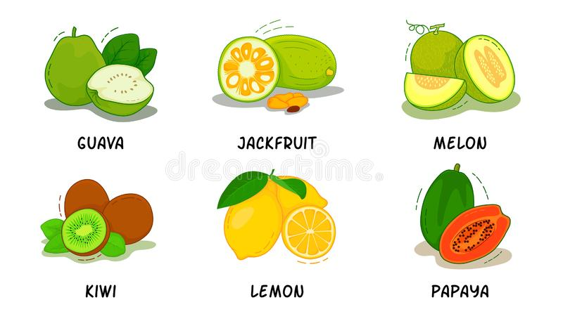 Vruchten, Vruchten Inzameling, Guave, Hefboomfruit, Meloen, Kiwi, Citroen, Papaja royalty-vrije stock afbeeldingen