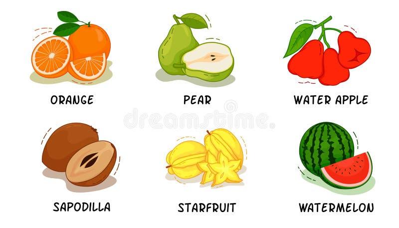 Vruchten, Vruchten Inzameling, Sinaasappel, Peer, Water Apple, Sapodilla, Starfruit, Watermeloen royalty-vrije illustratie