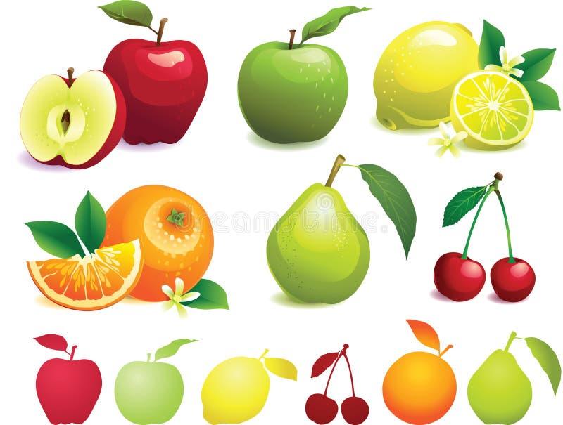 Vruchten met bladeren stock illustratie