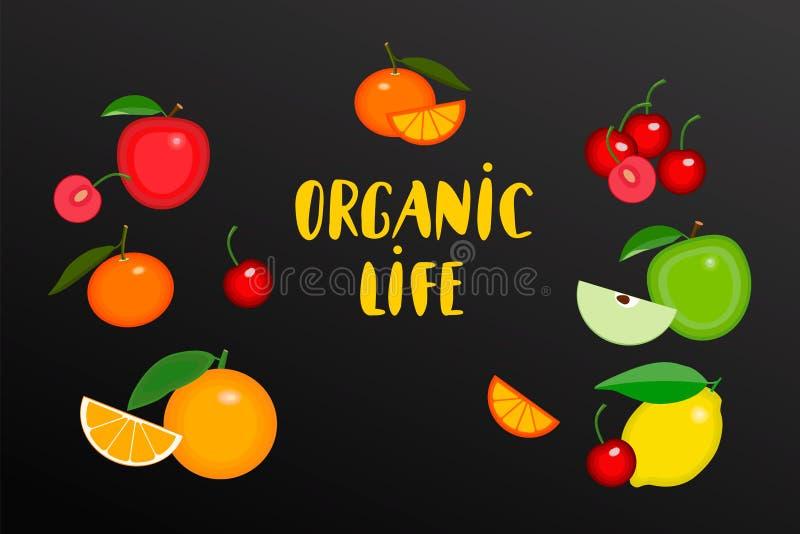Vruchten met hand geschreven teksten Organisch het levensembleem voor organische winkel Vectorvruchten collecton van appelen, cit stock illustratie