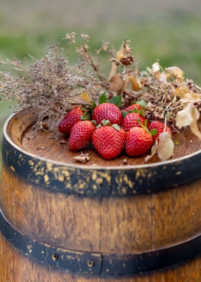 Vruchten op een houten oppervlakte in boomgaard in de zomer stock fotografie