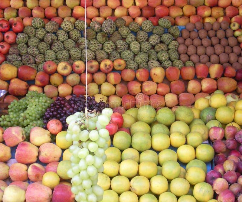 Vruchten van Kerala - India stock afbeelding